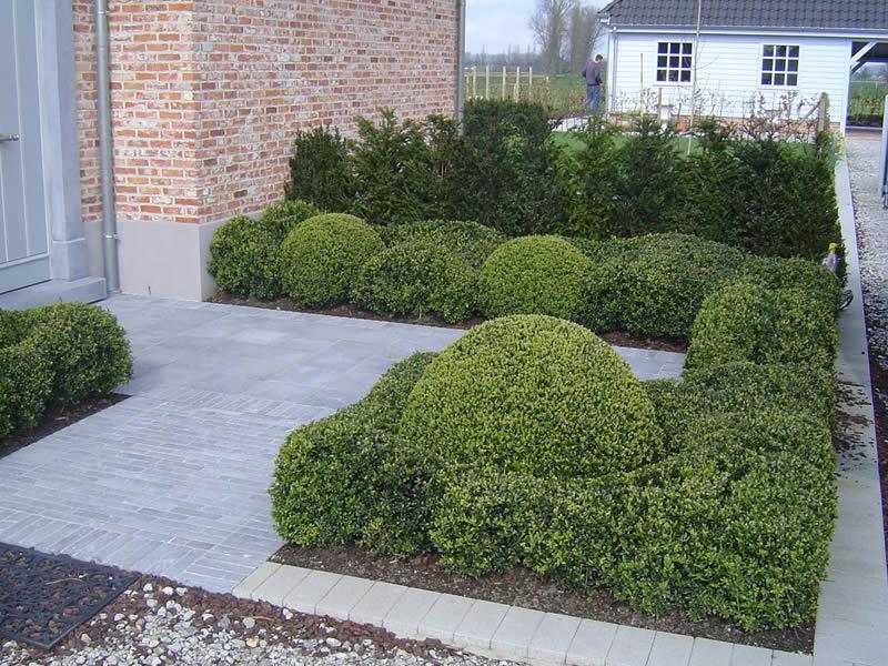 Realisaties tuinaannemer gedesto tuinonderhoud for Tuin aanleggen